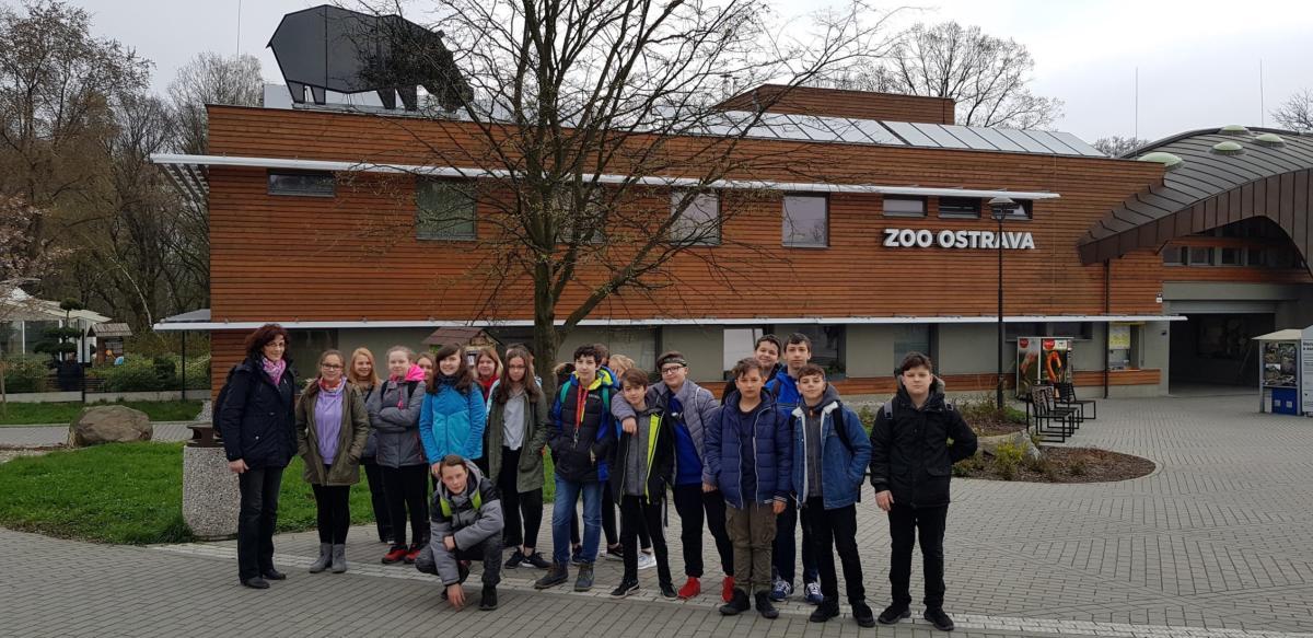 7.A - Zoo